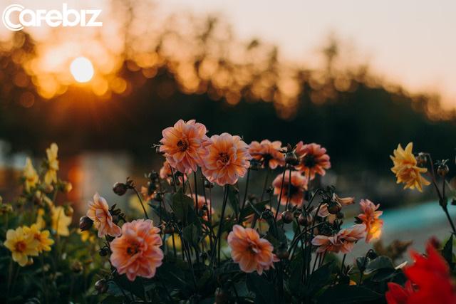 112 ngày dậy sớm từ 3h50 sáng, tôi như sống thêm một cuộc đời mới: Không phải để thành công, tôi chỉ muốn có cơ hội YÊU THƯƠNG mình nhiều hơn  - Ảnh 4.