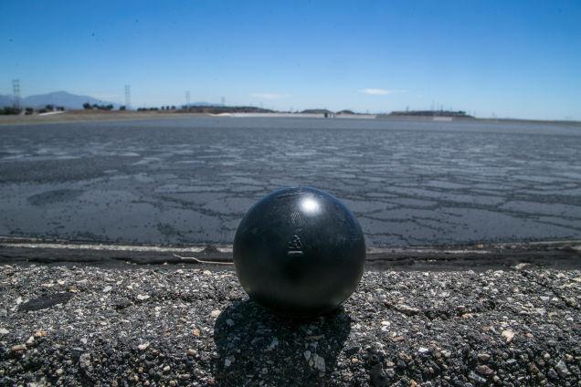 Đổ 96 triệu quả bóng đen xuống mặt hồ trong xanh, tưởng là phá hoại môi trường nhưng biết được ý nghĩa sâu xa thì cả thế giới phải nể phục - Ảnh 6.