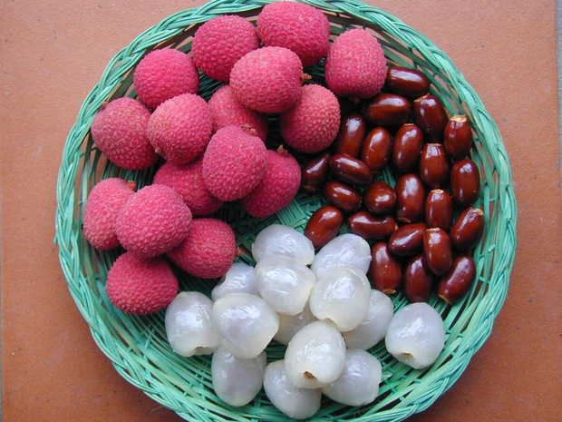 Ăn nhiều trái cây vào mùa hè rất tốt cho sức khỏe nhưng có 6 loại cần chú ý, lỡ ăn nhiều có thể bị đau họng, đầy hơi, mọc mụn - Ảnh 1.