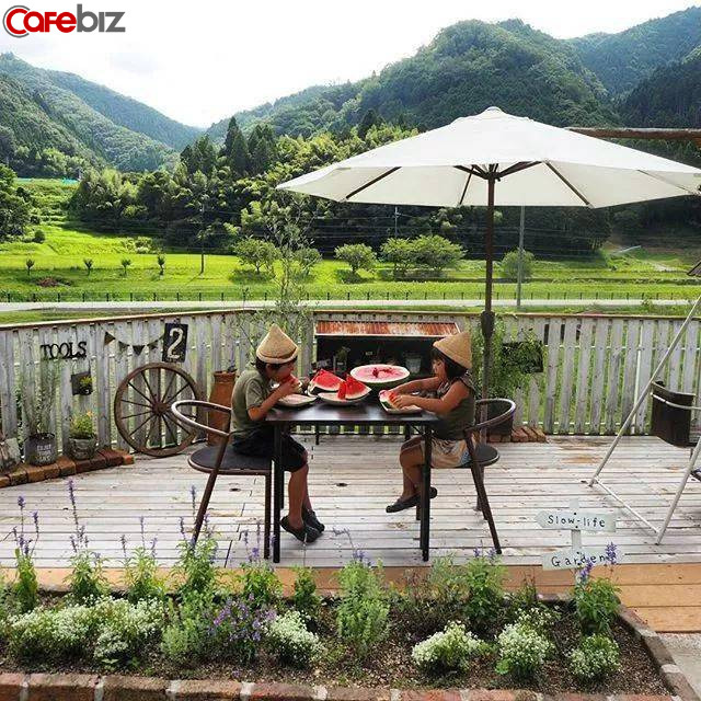 Hai vợ chồng 8X nghỉ việc về quê trồng rau làm ruộng: Thay vì mù quáng theo đuổi vật chất thành thị, chỉ cần có khoảng sân nhỏ và sống chậm rãi đã là hưởng thụ cuộc sống  - Ảnh 2.