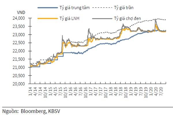 Bắt mạch tỷ giá USD/VND cuối năm 2020 - Ảnh 1.