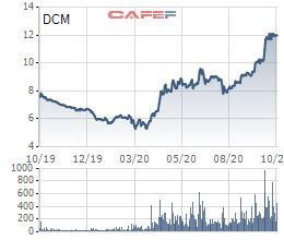 Đạm Cà Mau (DCM): Cổ phiếu tăng 85% từ đầu năm, sắp chi hơn 300 tỷ đồng trả cổ tức - Ảnh 2.