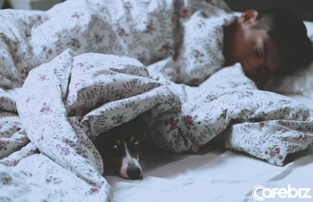 Bạn đi ngủ lúc mấy giờ, bạn sẽ có cuộc sống như vậy  - Ảnh 2.