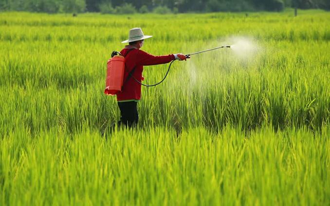 """Từng """"gây sốc"""" với chuỗi 16 phiên tăng trần rồi giảm sâu, Nông nghiệp Bình Thuận (ABS) thông báo chào bán riêng lẻ 42,5 triệu cổ phiếu"""