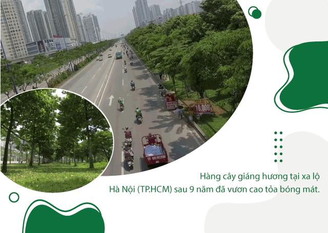 Khi triệu cây xanh là triệu câu chuyện về cảm hứng tích cực cho cuộc sống  - Ảnh 2.