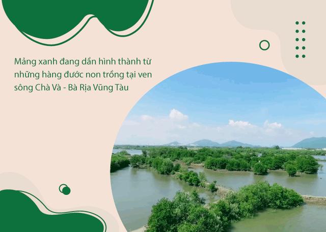 Khi triệu cây xanh là triệu câu chuyện về cảm hứng tích cực cho cuộc sống  - Ảnh 3.