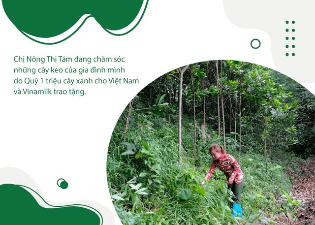 Khi triệu cây xanh là triệu câu chuyện về cảm hứng tích cực cho cuộc sống  - Ảnh 6.