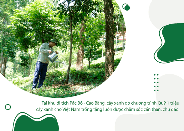 Khi triệu cây xanh là triệu câu chuyện về cảm hứng tích cực cho cuộc sống  - Ảnh 10.