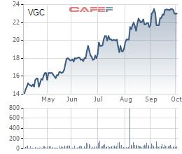 GELEX chào mua thành công 94,61 triệu cổ phiếu VGC, tiến sát mục tiêu sở hữu chi phối Viglacera - Ảnh 1.