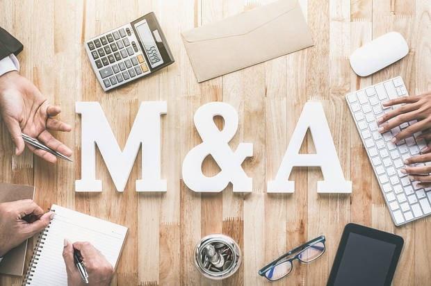 M&A: Nhà đầu tư Việt đang gia tăng mua lại - Ảnh 1.