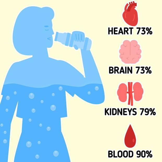 Không phải ai cũng cần uống 8 ly nước, con số 0,033 sẽ giúp tính đúng lượng nước bạn cần uống mỗi ngày - Ảnh 1.