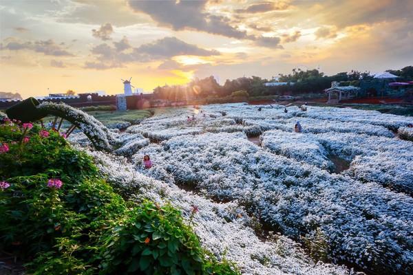 Sai phạm đất đai tràn lan ở Thung lũng hoa Hồ Tây  - Ảnh 2.