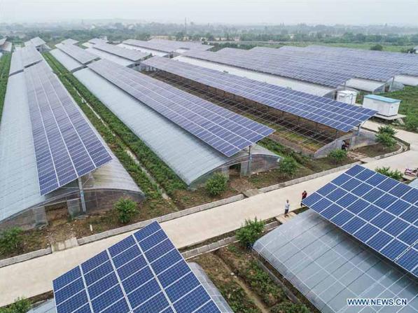 Điện mặt trời tốn đất: Hiệu quả ra sao? - Ảnh 2.