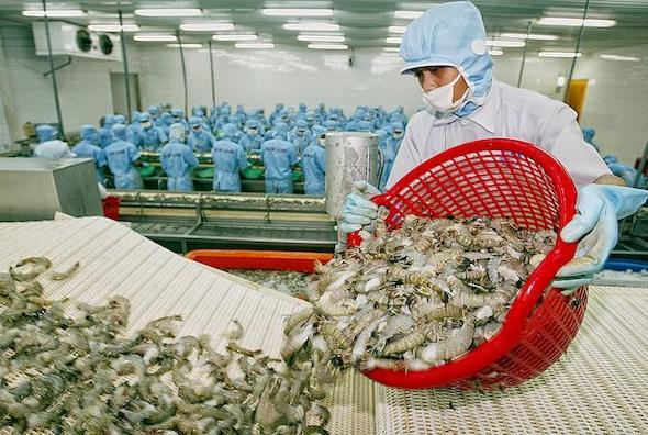 Trung Quốc siết chặt quy định nhập khẩu thủy sản đông lạnh - Ảnh 2.