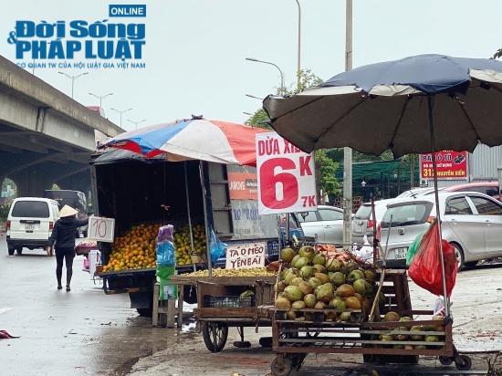 Tiểu thương hé lộ bí mật bất ngờ phía sau những trái dừa xiêm 6k tràn lan khắp phố - Ảnh 1.
