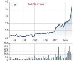 Lộ diện cổ đông lớn thâu tóm, cổ phiếu CVT liên tiếp tăng trần trong tháng 11 - Ảnh 2.