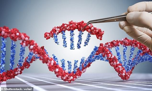 Các nhà khoa học tìm ra cách tiêu diệt tế bào ung thư bằng công nghệ mới đột phá, không gây tác dụng phụ - Ảnh 1.