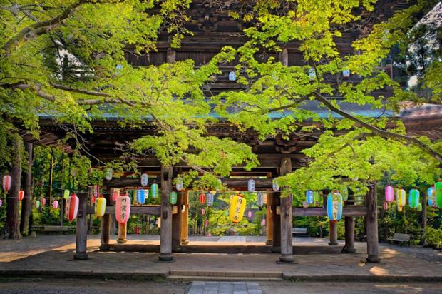 Toà lâu đài đen đủi nhất Nhật Bản: Mới 600 tuổi mà bị thiêu rụi tới 5 lần, giờ chỉ còn tàn tích - Ảnh 5.