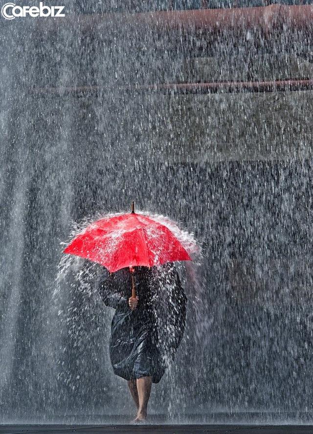 Mưa gió là chuyện thường, khó khăn là thường thái: Người trưởng thành, hãy học cách tự che ô cho mình  - Ảnh 1.