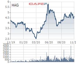 Hưng Thắng Lợi Gia Lai mang 64 triệu cổ phiếu HAG làm tài sản đảm bảo cho đợt phát hành 350 tỷ đồng trái phiếu - Ảnh 1.