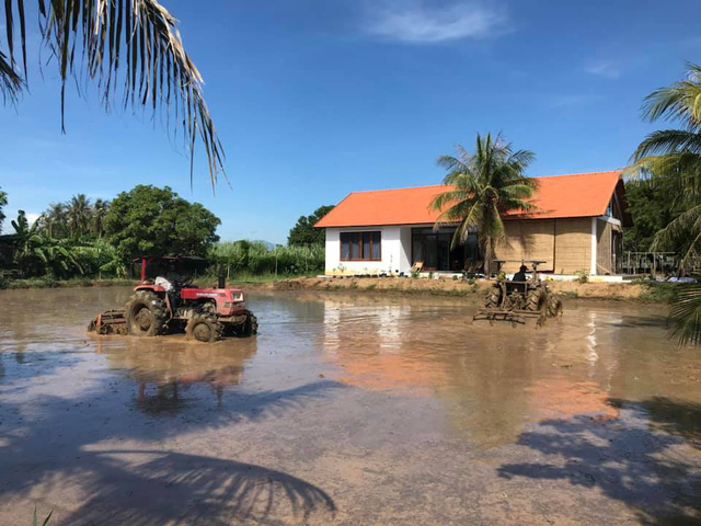 Rời Hà Nội mua 5000m² đất ở Ninh Thuận, cô gái 8x chỉ ra sự thật đằng sau 2 chữ an yên nhiều người nghĩ lúc về quê nuôi cá và trồng thêm rau - Ảnh 2.