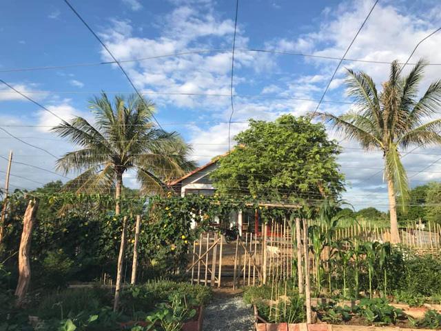 Rời Hà Nội mua 5000m² đất ở Ninh Thuận, cô gái 8x chỉ ra sự thật đằng sau 2 chữ an yên nhiều người nghĩ lúc về quê nuôi cá và trồng thêm rau - Ảnh 4.