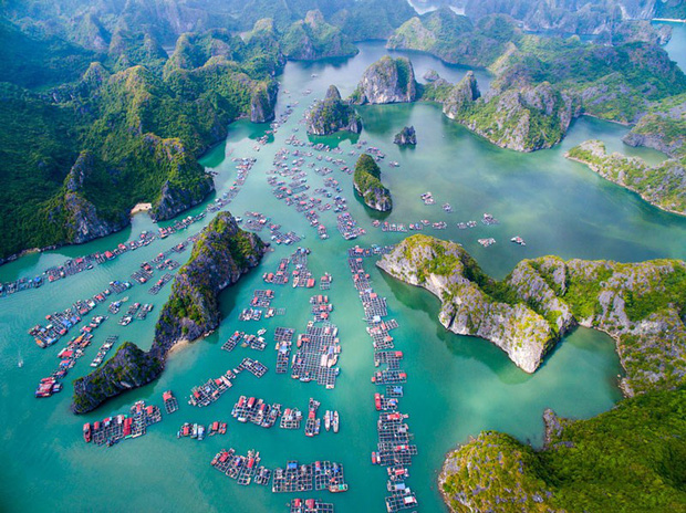 Không phải Đà Lạt, Sa Pa hay Đà Nẵng, địa điểm du lịch Việt Nam được nhiều người tìm kiếm nhất trong năm 2020 sẽ khiến bạn bất ngờ - Ảnh 2.