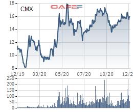 Camimex (CMX) triển khai phương án chào bán hơn 30 triệu cổ phiếu tăng vốn lên gấp đôi - Ảnh 1.