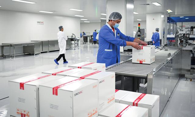 Vắc-xin COVID-19 cần bảo quản ở âm 70 độ C, làm sao để thế giới có đủ tủ lạnh?  - Ảnh 4.