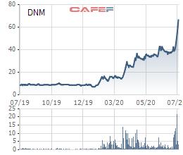 Nhu cầu khẩu trang y tế tăng đột biến, cổ phiếu Danameco (DNM) tăng 8 lần trong năm 2020 - Ảnh 1.