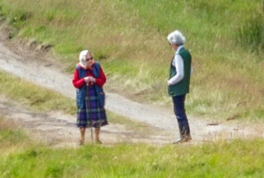 Thực hư về cuộc gọi video của Nữ hoàng Anh với Meghan Markle, cấm cô vĩnh viễn không được bước chân vào hoàng gia Anh - Ảnh 2.