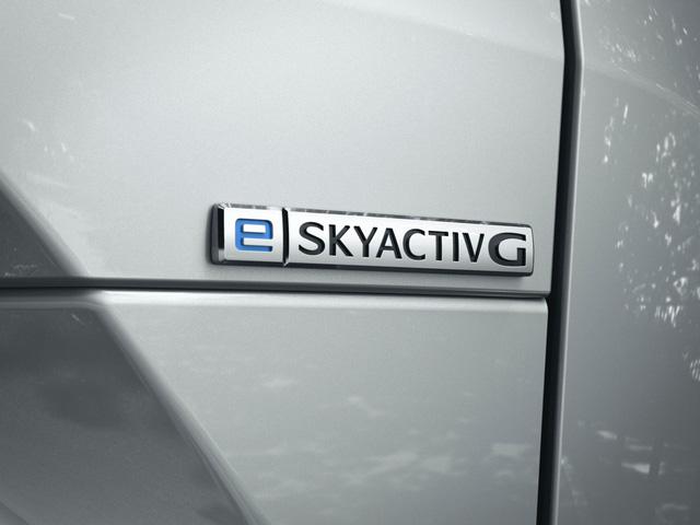 Mazda đi ngược các đối thủ với mẫu xe mở cửa kiểu Rolls-Royce này - Ảnh 4.