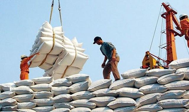 """80.000 tấn gạo miễn thuế sẽ """"bước chân"""" vào thị trường EU mỗi năm - Ảnh 1."""