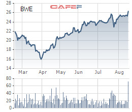Biwase (BWE) chốt ngày đấu giá công khai 37,5 triệu cổ phiếu tăng vốn điều lệ - Ảnh 1.