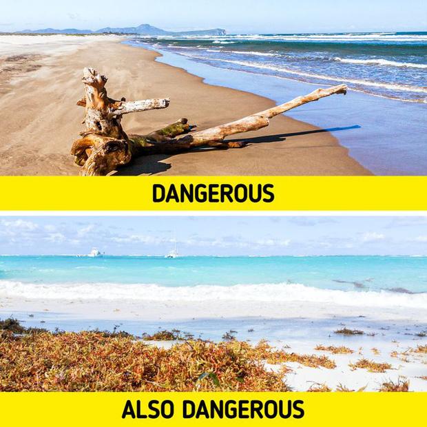 7 mối nguy kinh khủng nhất có khả năng khiến chúng ta phải bỏ mạng khi đi tắm biển, và cách để đảm bảo an toàn cho bạn - Ảnh 2.