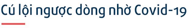 Chân dung Trần Ngọc Thái: Nam sinh Quảng Ngãi lớp 10 đã bán phần mềm diệt virus 'dạo' trở thành CEO startup triệu USD, tăng gấp đôi người dùng trong Covid-19  - Ảnh 7.
