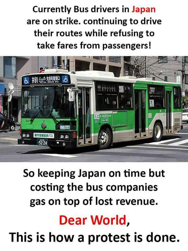 21 điều tuyệt vời chỉ Nhật Bản mới có khiến thế giới bái phục: Số 21 nhiều người chưa biết - Ảnh 1.