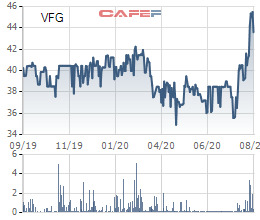 VFG tăng lên vùng đỉnh giá nhiều năm, PAN Group vẫn thông qua phương án chào mua công khai 4,8 triệu cổ phần - Ảnh 1.