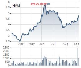 Chăn nuôi Gia Lai: Vốn chủ âm 5.300 tỷ đồng, HAGL sẽ chuyển đổi 5.866 tỷ nợ vay, phải thu sang cổ phần - Ảnh 3.
