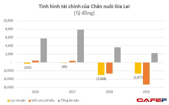 Chăn nuôi Gia Lai: Vốn chủ âm 5.300 tỷ đồng, HAGL sẽ chuyển đổi 5.866 tỷ nợ vay, phải thu sang cổ phần - Ảnh 2.