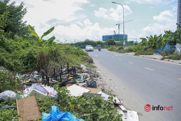 Cây chết khô, um tùm cỏ dại, rác thải bủa vây đường nối đại lộ Thăng Long - Ảnh 4.