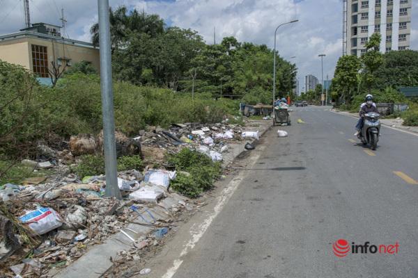 Cây chết khô, um tùm cỏ dại, rác thải bủa vây đường nối đại lộ Thăng Long - Ảnh 5.