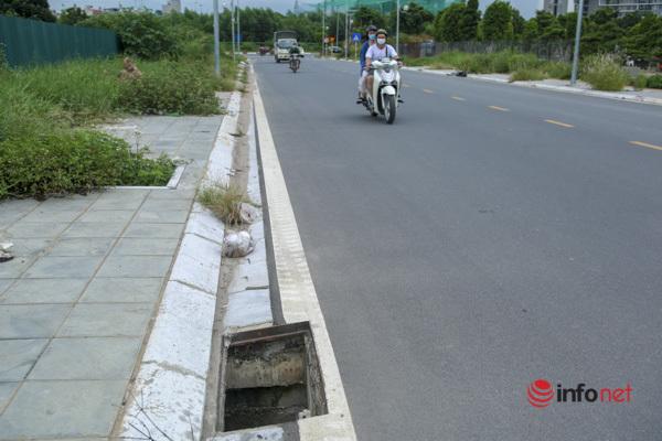 Cây chết khô, um tùm cỏ dại, rác thải bủa vây đường nối đại lộ Thăng Long - Ảnh 6.