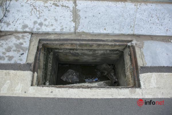 Cây chết khô, um tùm cỏ dại, rác thải bủa vây đường nối đại lộ Thăng Long - Ảnh 7.