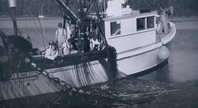 Na Uy: Từ bán cá đến bán dầu và câu chuyện đánh bại Anh trong cuộc đua vùng Biển Bắc - Ảnh 1.