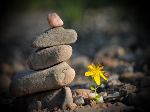 Lợi ích đến từ những phước lành và phước lành đến từ những điều bất hạnh:  Tâm bình như nước, lòng bớt lo lắng, thuận theo tự nhiên, vạn sự an - Ảnh 2.