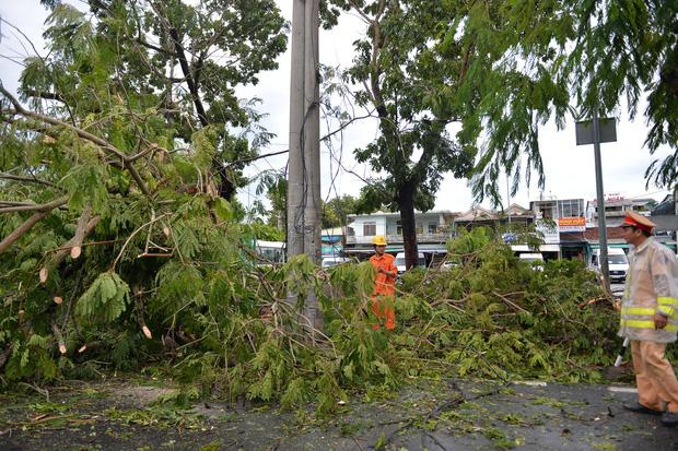 Cây ngã la liệt khiến 1 người chết và nhiều người bị thương, toàn tỉnh Thừa Thiên Huế mất điện sau khi bão số 5 đổ bộ - Ảnh 1.