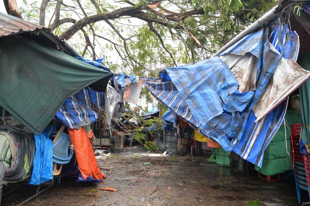 Cây ngã la liệt khiến 1 người chết và nhiều người bị thương, toàn tỉnh Thừa Thiên Huế mất điện sau khi bão số 5 đổ bộ - Ảnh 13.