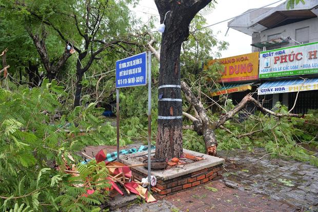 Cây ngã la liệt khiến 1 người chết và nhiều người bị thương, toàn tỉnh Thừa Thiên Huế mất điện sau khi bão số 5 đổ bộ - Ảnh 4.