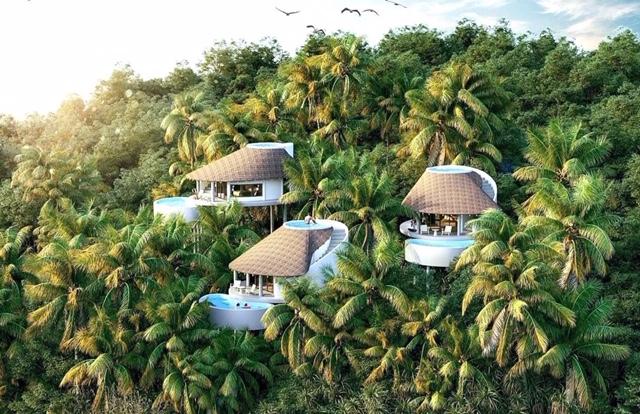 """Người giàu mua nhà nghỉ dưỡng ven đô: Đã chơi thì chơi tới bến, chứ không nên lửng lơ ở mô hình """"farmstay"""" hay nhà vườn - Ảnh 2."""